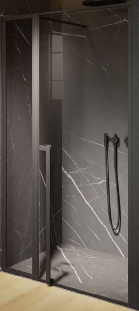Фото - Душевая дверь Riho LUCID GD104 1200 x 2000 Black (GD112B000)